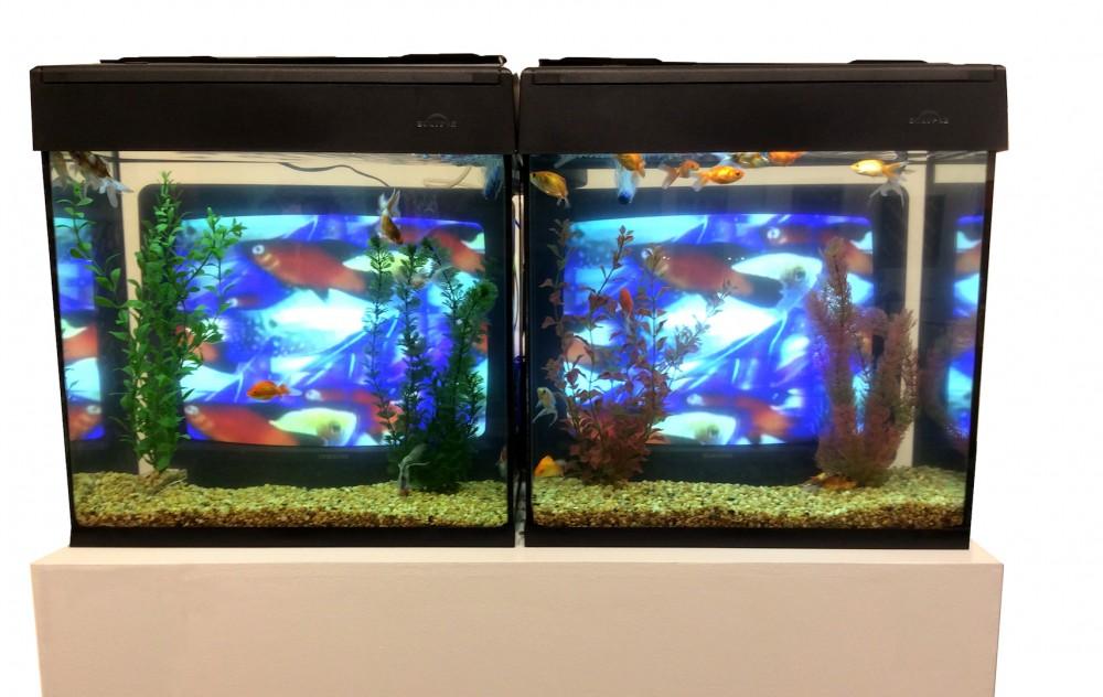 Carl Solway Gallery (Cincinnati, USA) with Nam June Paik's TV Fish, 2000. Photo: Vanessa Albury