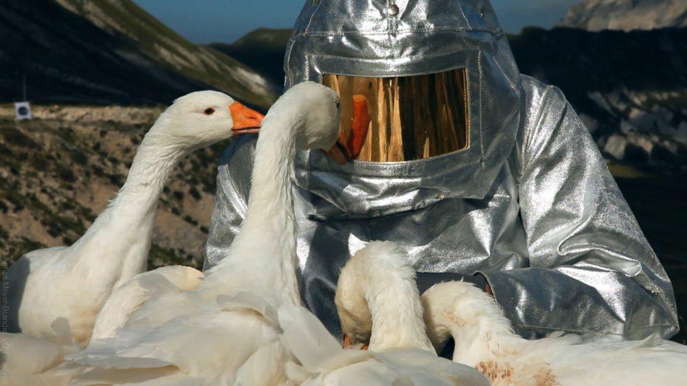 Agnes Meyer-Brandis, SPACE-SUIT-TESTING, Astronaut Training Method No.XIII. Videostill Moon Goose Colony, 2011. Courtesy Agnes Meyer-Brandis