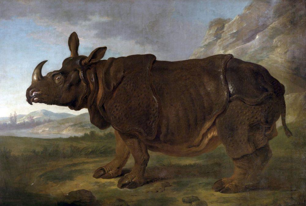 Jean-Baptiste Oudry, Clara le Rhinoceros, 1749.