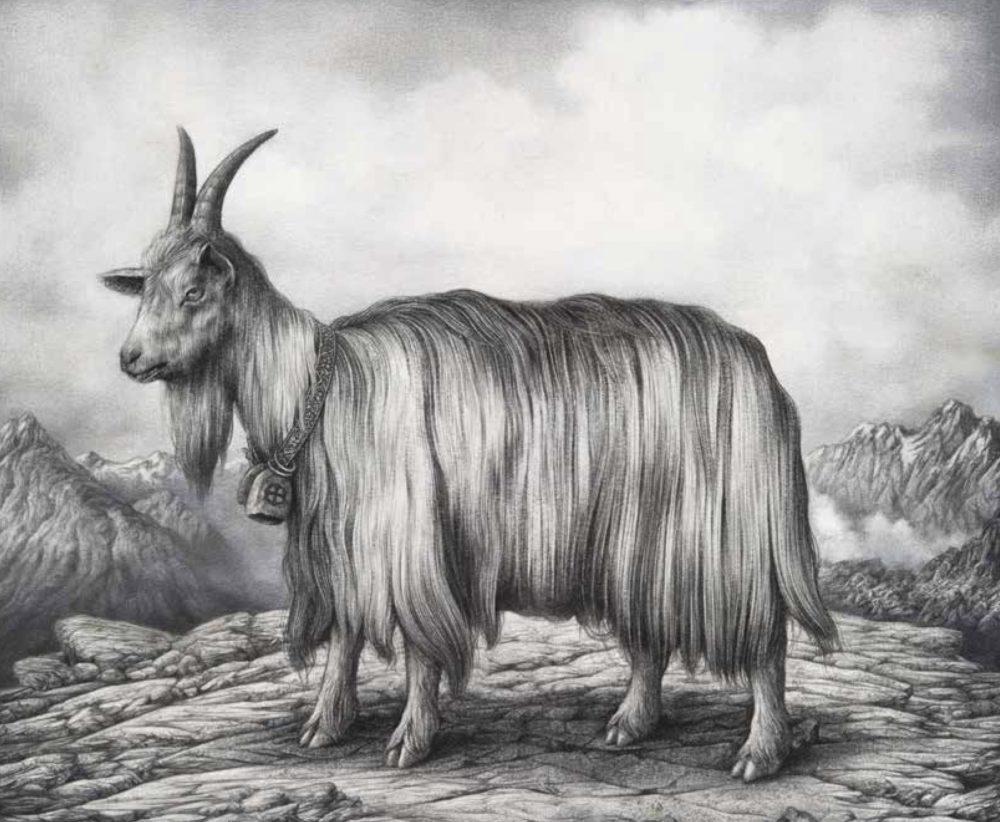 Sverre Malling, Norwegian Mountain Goat, 2011. Tegningen parafraserer Syndebukken av den prerafaelittiske maleren William Holman Hunt. Foto: Thomas Widerberg.
